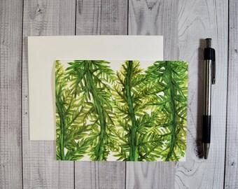 Green Fern Notecards