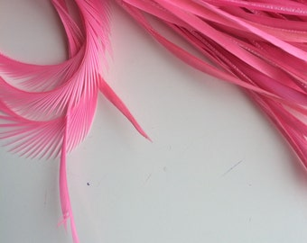 GOOSE BIOT FEATHERS / Cotton Candy Pink /  712