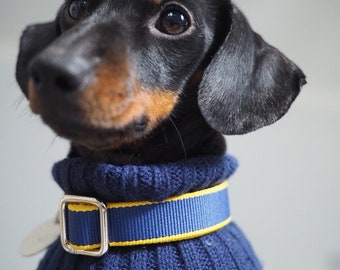 Navy Blue and Yellow Strong Striped Dog / Puppy Collar | Small to Medium Sized Dogs