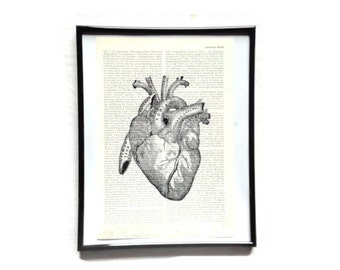 Heart Anatomy vintage art print encyclopedia old book pages image poster