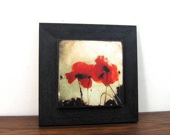 Two poppies - about 22x22cm with collage photo frame