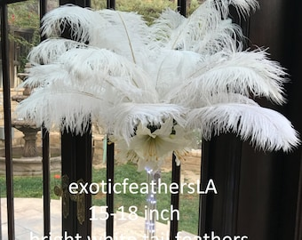 White Ostrich Feather Plumes, TAILS 15 to 18 inch, 1-100 Pcs. USA Store, Centerpieces, Samba, Carnival, Mardi Gras, Weddings, Burlesque
