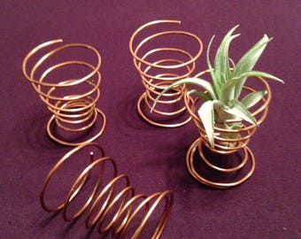 Air plant stand / Air plant display / Air plant holder / tillandsia holder / tillandsia display / tillandsia stand / office air plant stand
