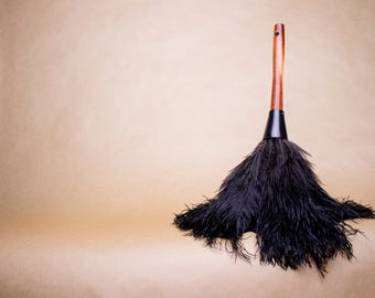 Ostrich Feather Duster - Allergy begone!