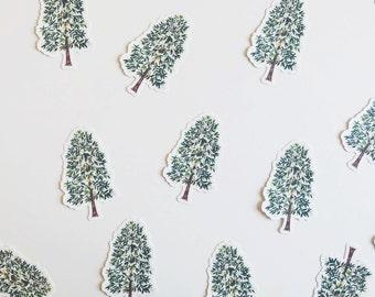 Southern Magnolia Tree Die-Cut Sticker
