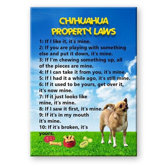 Chihuahua Property Laws Fridge Magnet No 1