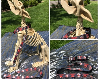 """1"""" Rocky Horror Collar and Leash Set"""