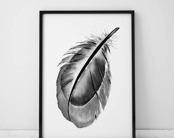 Black Feather Print Digital Download