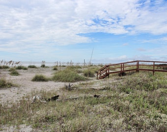 Bridge To Isle Of Palms, Ocean, Sand Dunes, Beach, Charleston, South Carolina