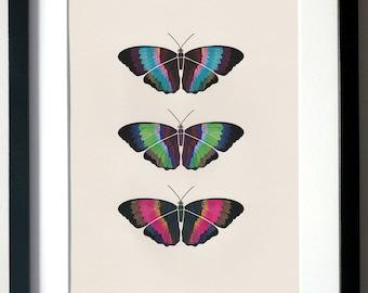 Butterflies. A4 Digital Print, Wall Art, Illustration.