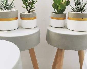 Cylinder Concrete Planter / Round Pot for succulents and cacti - White & Gold