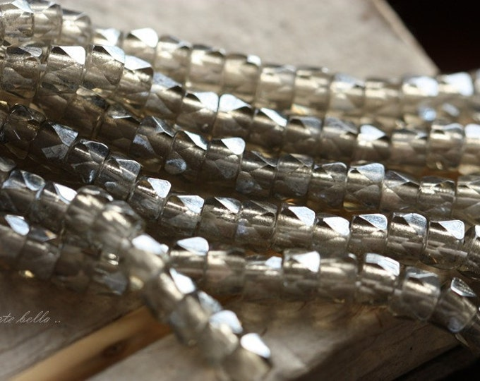SILVERED CROWS .. 20 Premium Czech Faceted Crow Glass Beads 6mm (4360-20)
