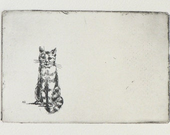 original etching of a sitting cat
