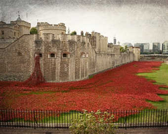 London Photography, Red, Poppies, Tower of London, Remembrance Day, Fine Art Print, Travel Photo, Europe, Castle, London Decor, Wall Art