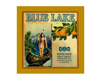 Small Journal - Blue Lake Citrus - Fruit Crate Art Print Cover