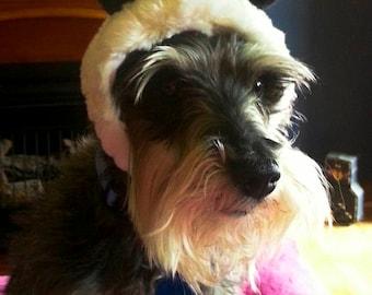 Pet Dog Bear hat or Panda Hat