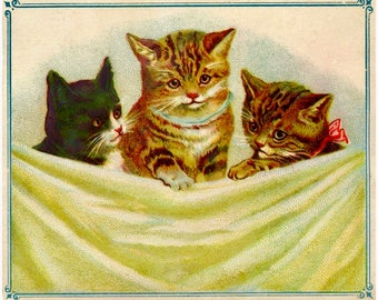 Vintage Cats Kittens Graphic Image Art Fabric Block Doodaba