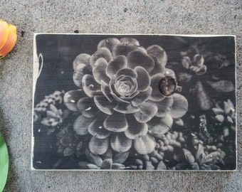 Photo Transfer to Wood, Wood Transfer, Black and White Photo on Wood