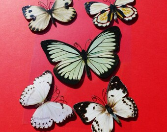 5 large butterflies stickers glittery embossed 3D metal antenna