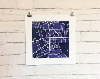 Amherst College Map Print