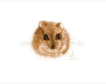 Print of a watercolour painting, sepia shaded variation - Mouse? (12 x 8 inch)