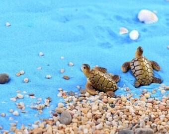 2 SEA TURTLES
