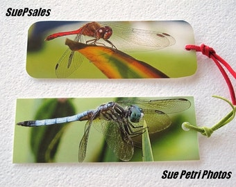 Photo Bookmarks - Dragonfly Photo Bookmarks - Nature Photography - Macro Photography - Close Up Photography - Color Photography
