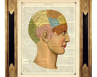 Anatomy Head Phrenology Poster Dictionary Art - Vintage Victorian Book Page Art Print Steampunk