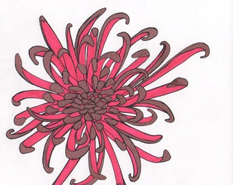chrysanthemum with scarlet and copper petals ORIGINAL artwork flower illustration ink on paper 6 x 6