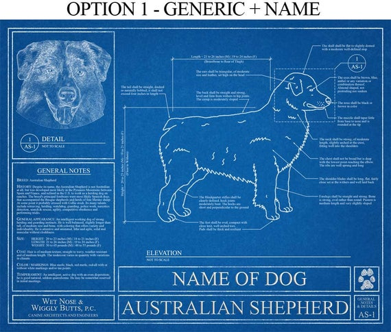 Personalized australian shepherd blueprint australian malvernweather Images