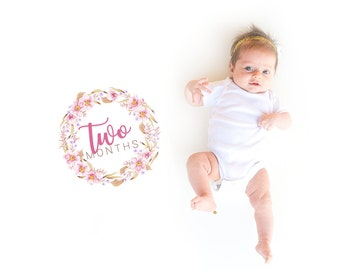 INSTANT DOWNLOAD Baby Age Milestones, Month-by-Month Printables, Pink Flowers