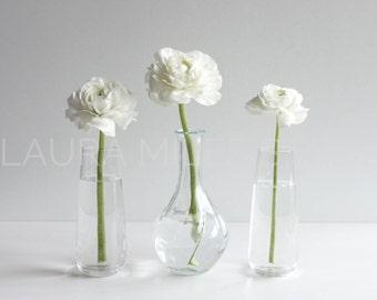 White Flowers in Vase / White Ranunculus / Flower Stock Photo / Styled Photography / Social Media Photo / Stock Photo / Digital Background