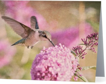 Hummingbird in Pink - single blank note card, Gifts for her, Gifts for mom, Gifts for nature lovers, Gifts for bird lovers