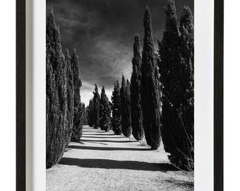 The walk - print framed