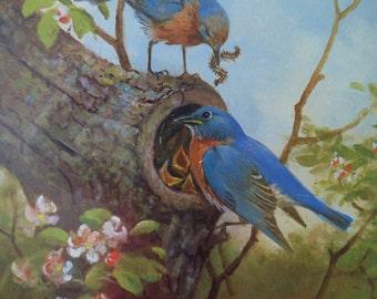 Owen j. Gromme Print, Fine Art Print