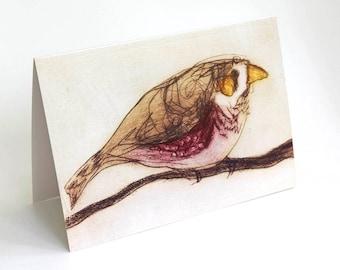 Finch Card, Greeting Card, Bird Art Card, Bridget Farmer Card, Australia, Australian Bird, Zebra Finch