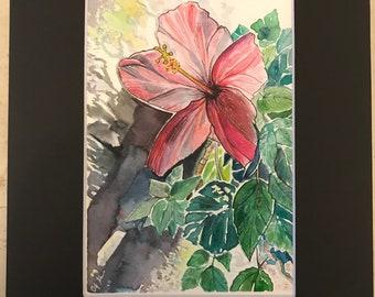 Hibiscus in the Shadows original watercolor