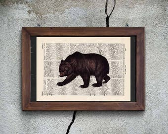Print - brown bear - antique book page
