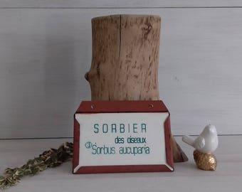 Engraved arboretum Sorbier_des_oiseaux France Sorbus aucuparia Arboretum signaletic plaque_signaletique