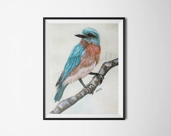 Bluebird - LIMITED EXCLUSIVE  / Watercolor / Painting / Bird / 5x7 / Print / Home Decor