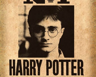 Undesirable No. 1 Harry Potter Wanted Poster Wall Mural