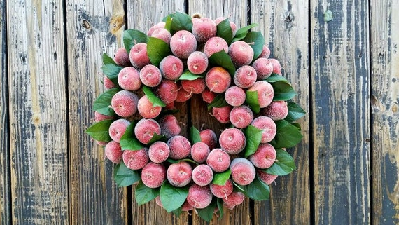 Sugared Apple Wreath, Christmas Wreath
