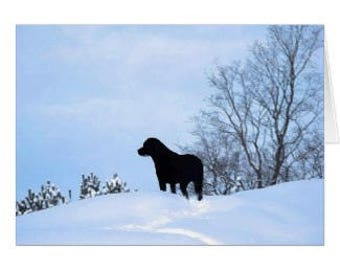 Black Labrador card - Black Lab Art - Labrador art - Black Lab Holiday Card - Thank You card - Birthday Card - Pet Loss Card
