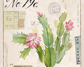 Christmas Cactus Print, Cactus Illustration, Cactus Art, Cactus Decor, Cactus Wall Art, Christmas Cactus