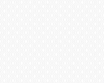 RJR Patrick Lose Odds and Ends Black and White Fabric 2910-003 White Background White Serpentine BTY