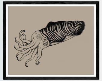Cuttlefish Drawing Print Nautical Cephalopod Decor Marine Art Victorian Style Gallery Wall Art  Boys Bedroom  Decor Steampunk  Ink Sepia