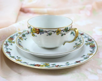 Haviland Limoges Tea Cup Trio, Bone China, Cup, Saucer, Plate, Nasturtium Pattern, Vintage from 1920s