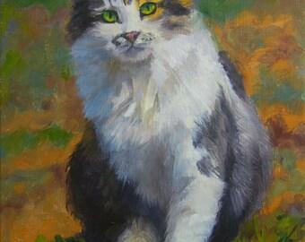 Winston, 8x10 Original Oil Painting on Panel by Alice Leggett