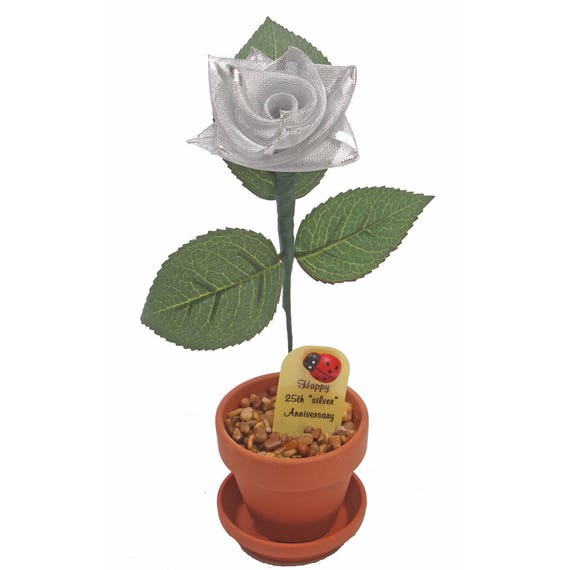 25th Anniversary Gifts For Him: 25th Anniversary Gift Silver Ribbon Rose