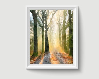 Forest Painting Postcard Poster Art Print Q228
